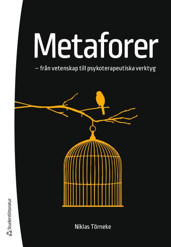 I de flesta modeller för psykoterapi antas användning av metaforer vara ett viktigt verktyg. Men hur och när ska behandlare ta till metaforiska uttryck, om det ska göras? Med vilket syfte i så fall? Och finns det någon vetenskaplig grund för antagandet att meta foranvändning är centralt i psykoterapi?